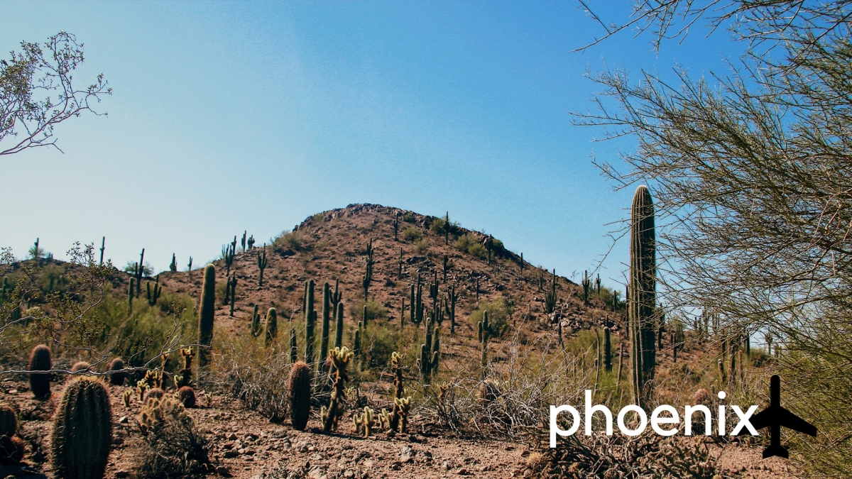 Phoenix, Arizona through Photos